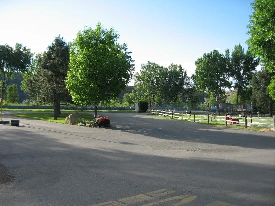 Billings KOA: Lots of Trees and Grass