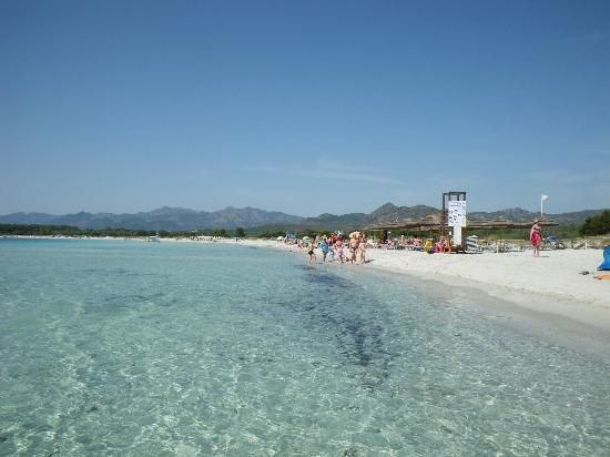 Cala Brandinchi: Long sandy beach