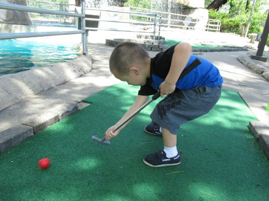 Timber Falls Adventure Golf: Not following any rules, he still had fun.