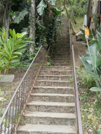 LA Active Adventure Tours: A scene from The Invasion of the Body Snatchers was shot here