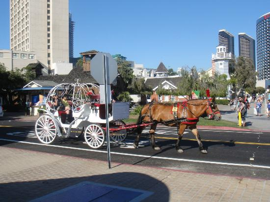 Seaport Village: Horse drawn carriage ride