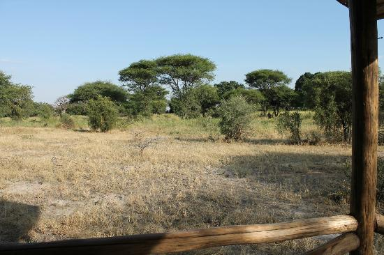 Kirurumu Tarangire Lodge: view from tent 5