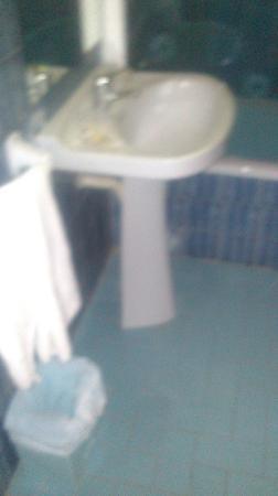 Apartments Arlanza : baño