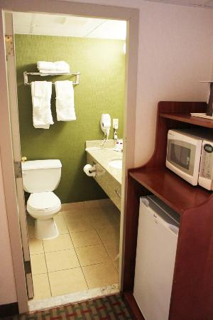Ramada East Orange: Appliances and bathroom
