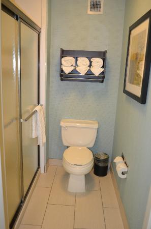 Hampton Inn & Suites Manteca: Bathroom/Shower area