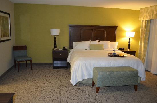 Hampton Inn & Suites Manteca: King bed