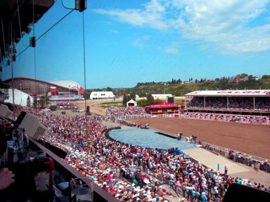 Grandstand Calgary Stampede Rodeo Show From The Club House