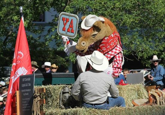 Harry The Horse Calgary Stampede Mascot Picture Of