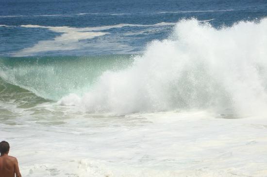Sandos Finisterra Los Cabos: LAS GRANDES OLAS