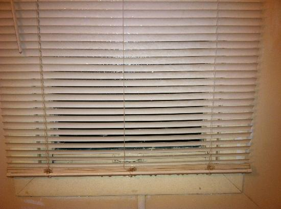 Eddy's Motel: Blinds that don't shut all the way in the shower,