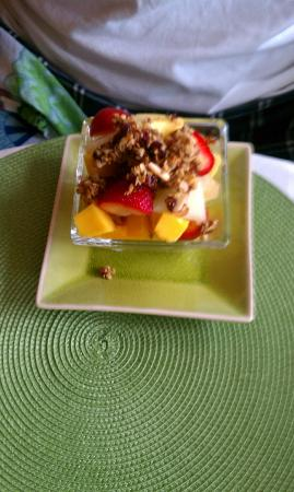 Country Villa B&B Inn & Day Spa: Fruit with granola