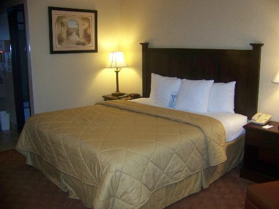 BLVD Hotel : Room