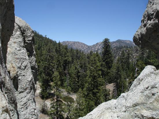 Nice View Here Picture Of Angeles National Forest