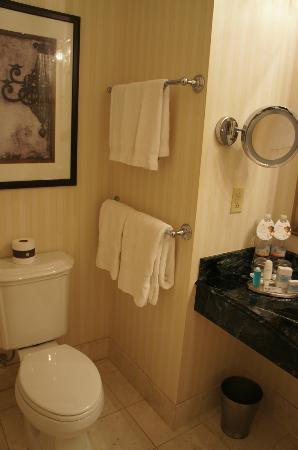 バスルームも十分な広さ