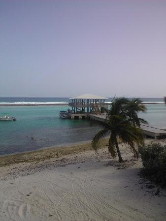 Carib Sands Beach Resort: Dock with hammocks