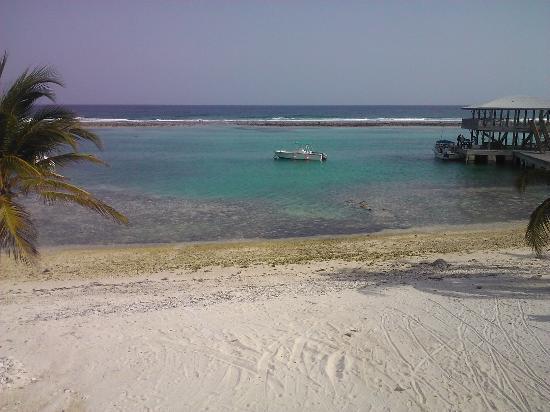 写真Carib Sands Beach Resort枚