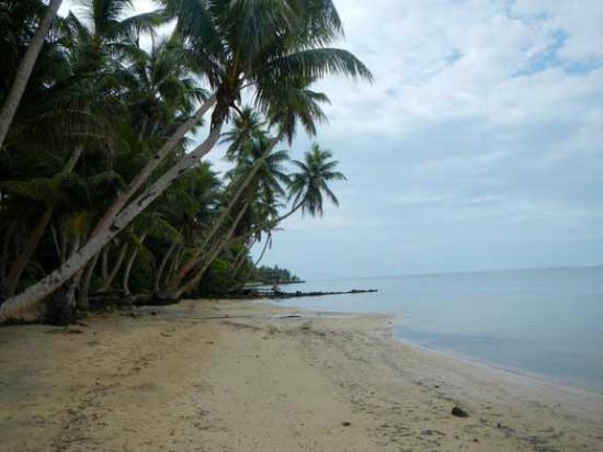 Manta Ray Bay Resort: Local Beach
