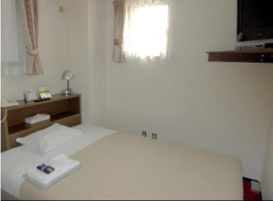 Hotel Yanagibashi: Single Room