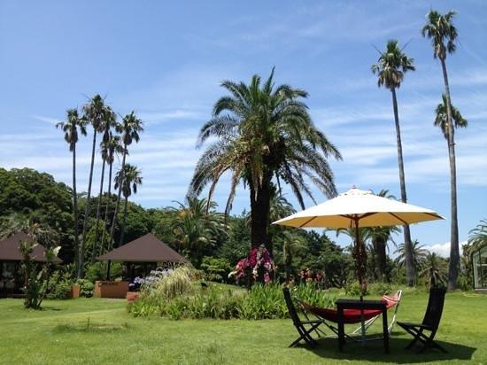 Island Camp Villa