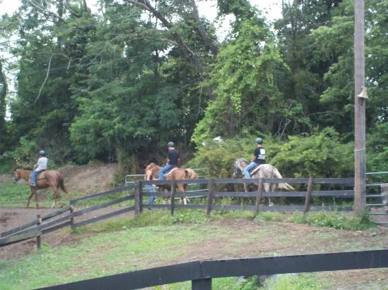 Pinegrove Family Dude Ranch: Trail ride