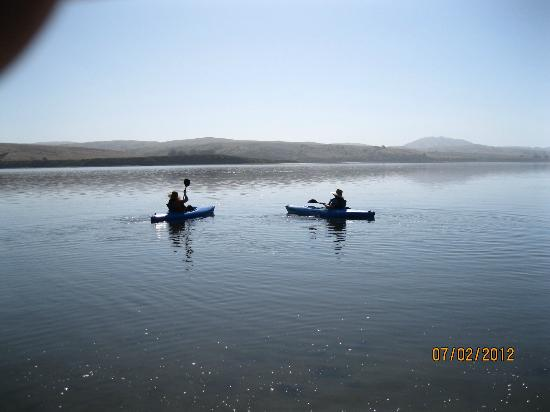 Tomales Bay Resort: view from pier landing by launch