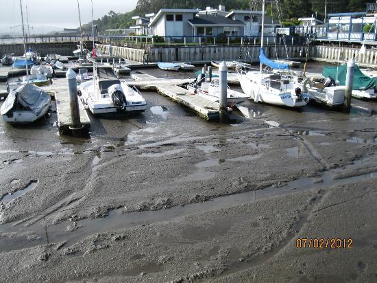 Tomales Bay Resort: Very LOW tide!!!