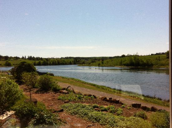 Prince Edward Island Preserve Company: the beautiful view from our table - so relaxing