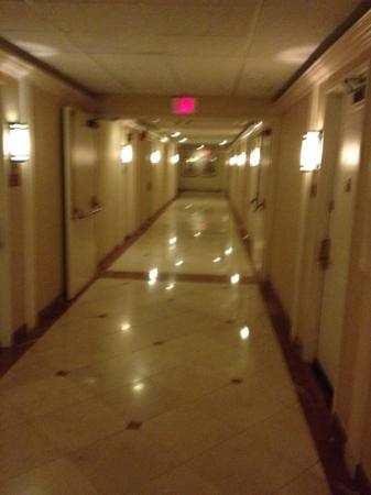 Hollywood Hotel: hall way to rooms