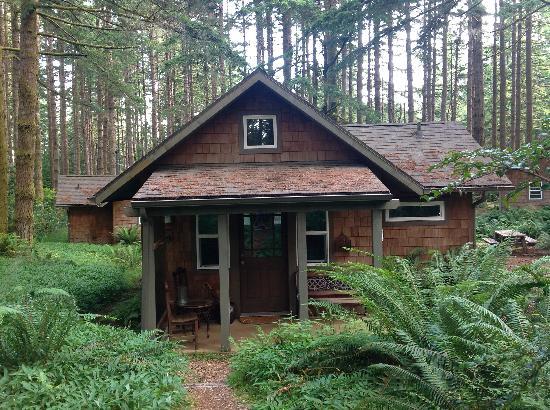 WildSpring Guest Habitat: Cabin 4