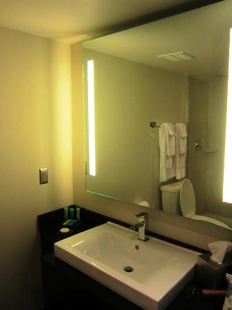 Radisson Hotel Menomonee Falls照片