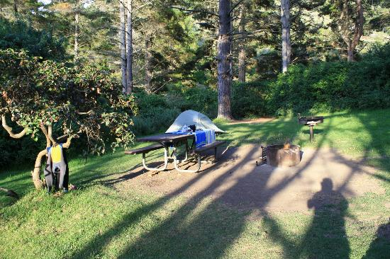 Plaskett Creek Campground: #32