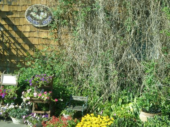 Shichiku Garden : 紫竹ガーデン