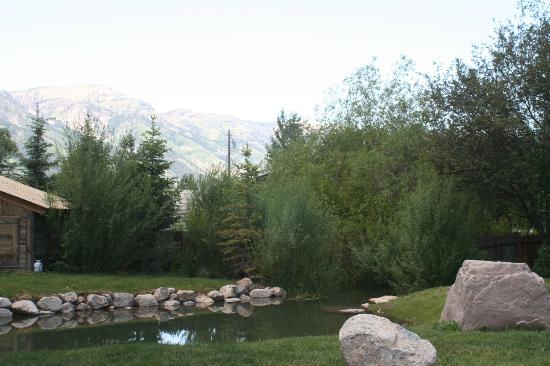 """Fireside Resort: Swimming """"pond"""" next to outdoor in-ground spa"""
