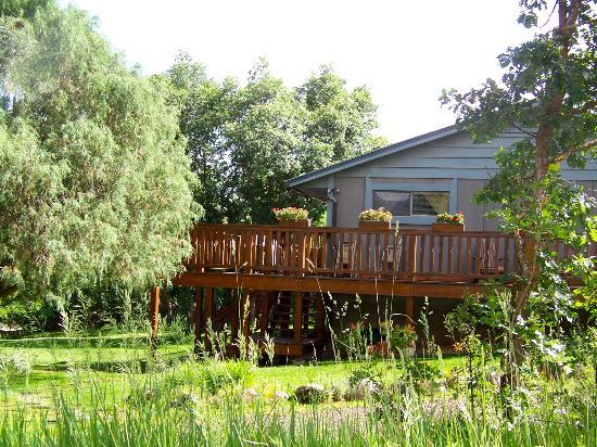 Country Sunshine Bed and Breakfast: breakfast patio and birdwatching
