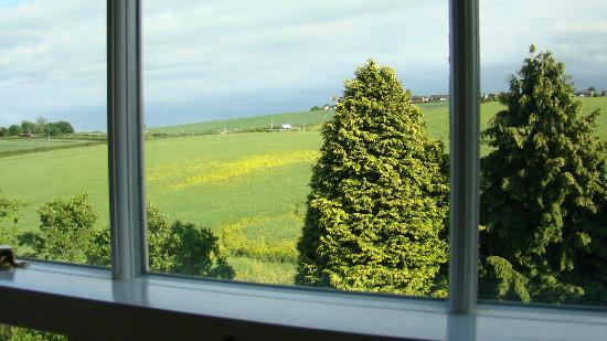 Low Urpeth Farm B&B: A view from our window