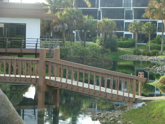 Pointe Santo de Sanibel: lagoon area in center of complex included pool/hot tub
