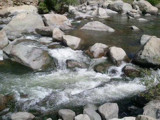 Pioneer Point Campground: Kern River