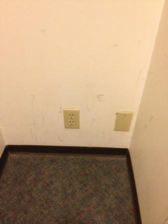 Lone Pine Motel : the nasty, unclean walls