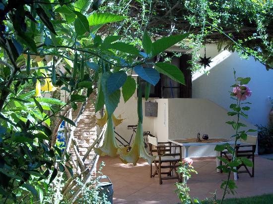 Revekka Apartments : Ο πίσω κήπος