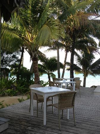 Little Polynesian Resort照片