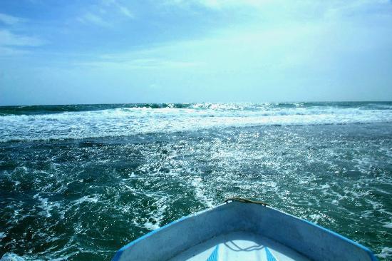 巴拉皮提亞海灘別墅照片