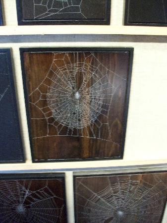 Knight's Spider Web Farm: Web Spider 1