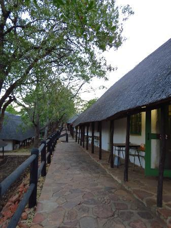 Punda Maria Restcamp: The bungalows