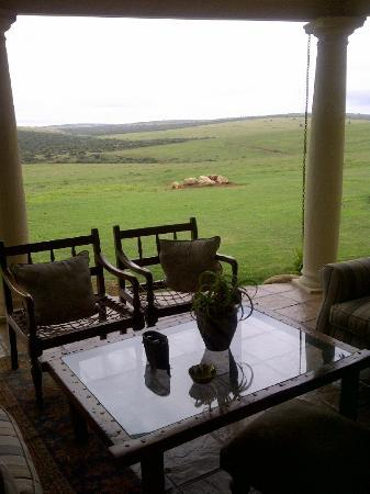 Gorah Elephant Camp : The View from the Terrace