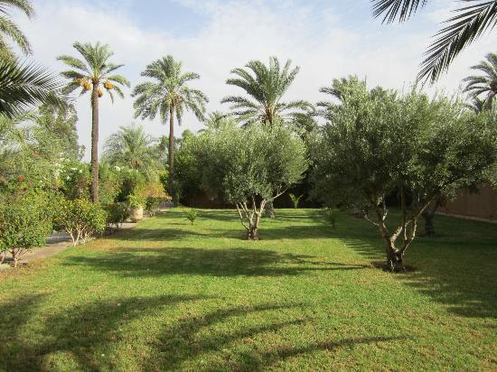 Villa 55: dans le jardin
