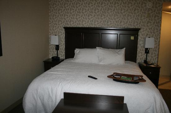 Hampton Inn Tunkhannock: Our Room