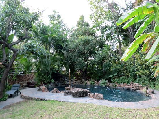 Kaia Tani Guesthouse: Pool & gardens