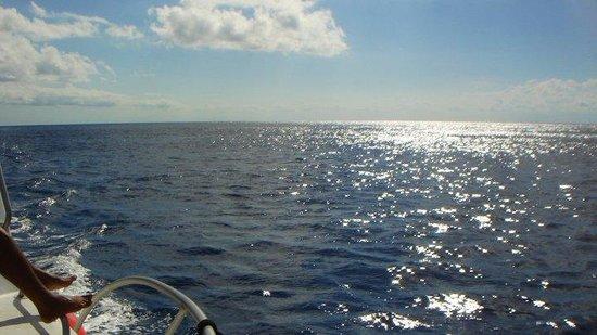 Parque Nacional  Arrecifes de Cozumel : el mar caribe