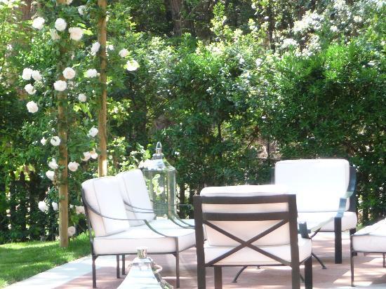 Hotel Mediterraneo: Terrazza
