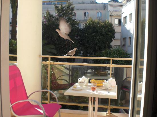 Hotel Moliere: Pigeons can steal your breakfast :)